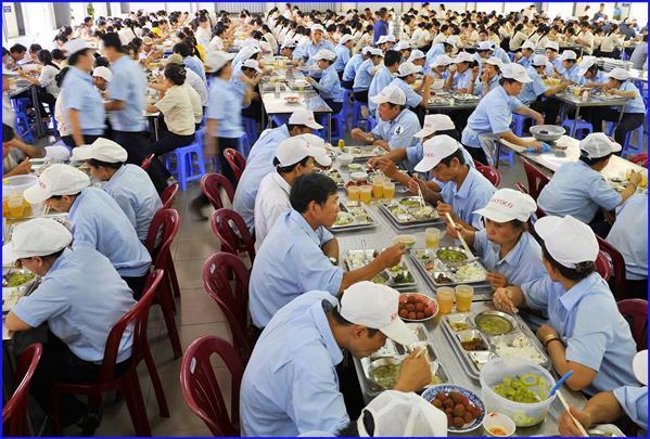 công ty tnhh cung cho thuê lao động